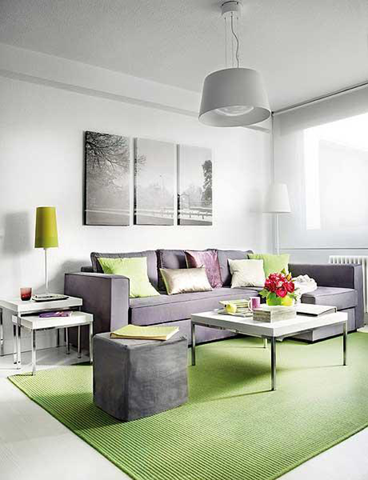 ideas for my living room