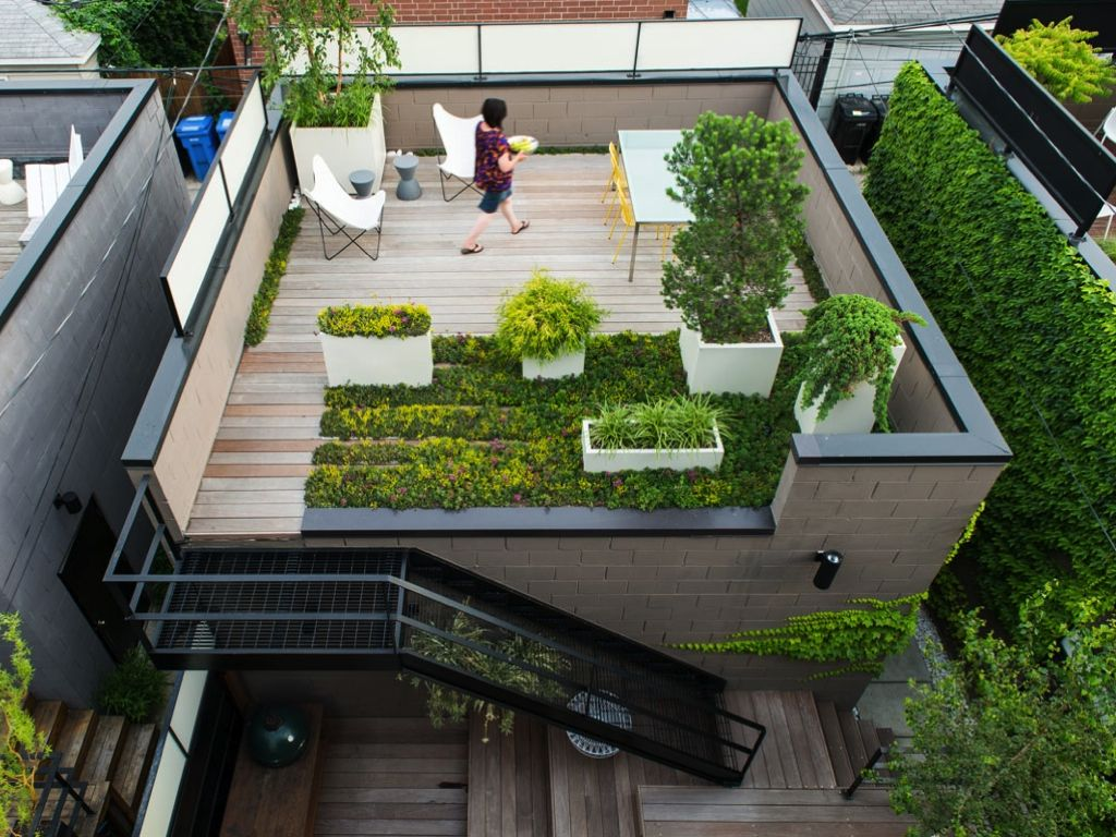 roof terrace quotes
