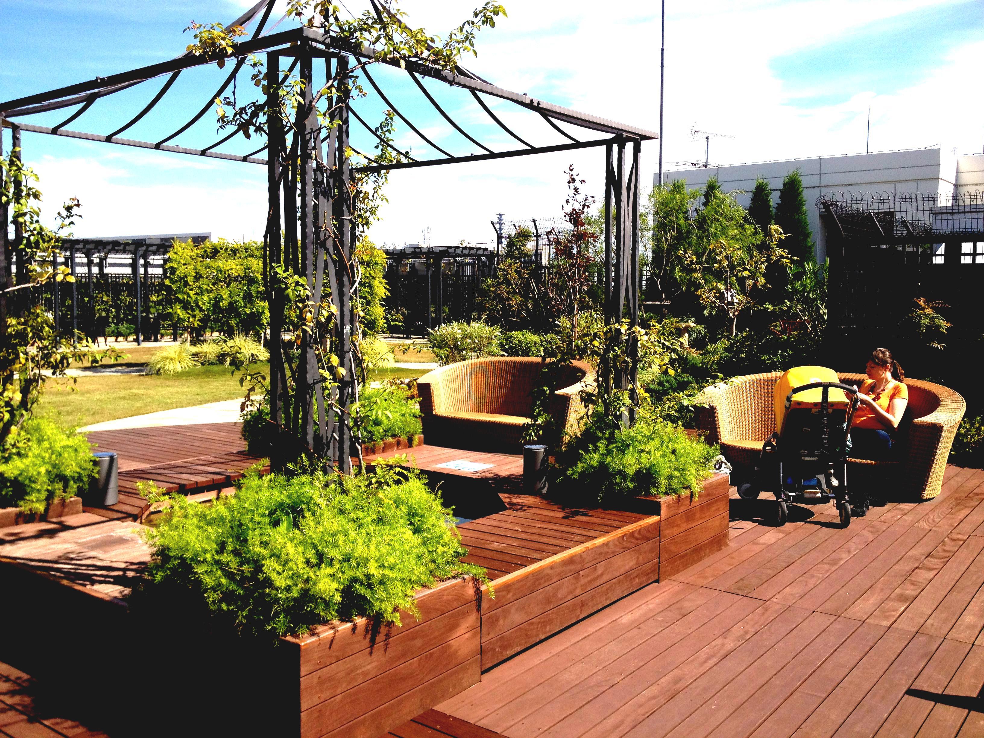 rooftop garden 3d