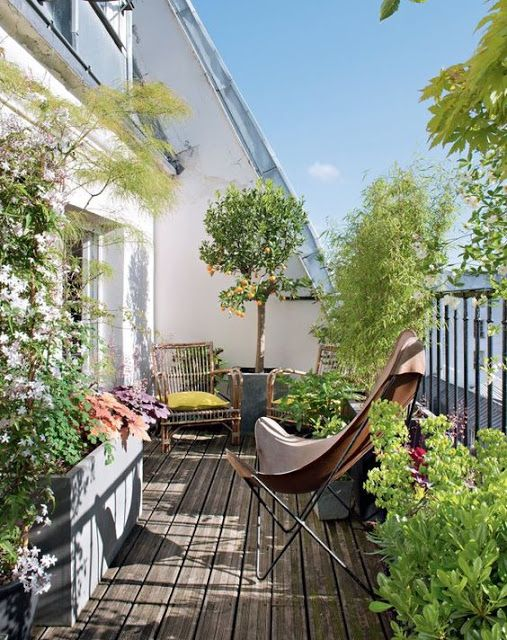 roof terrace hackney